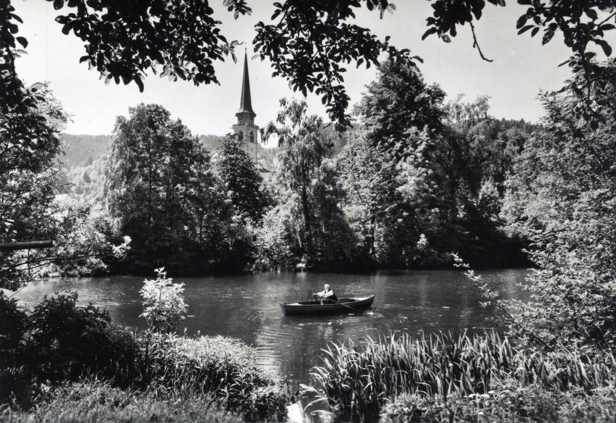 Käsiweiher St.Margrethen